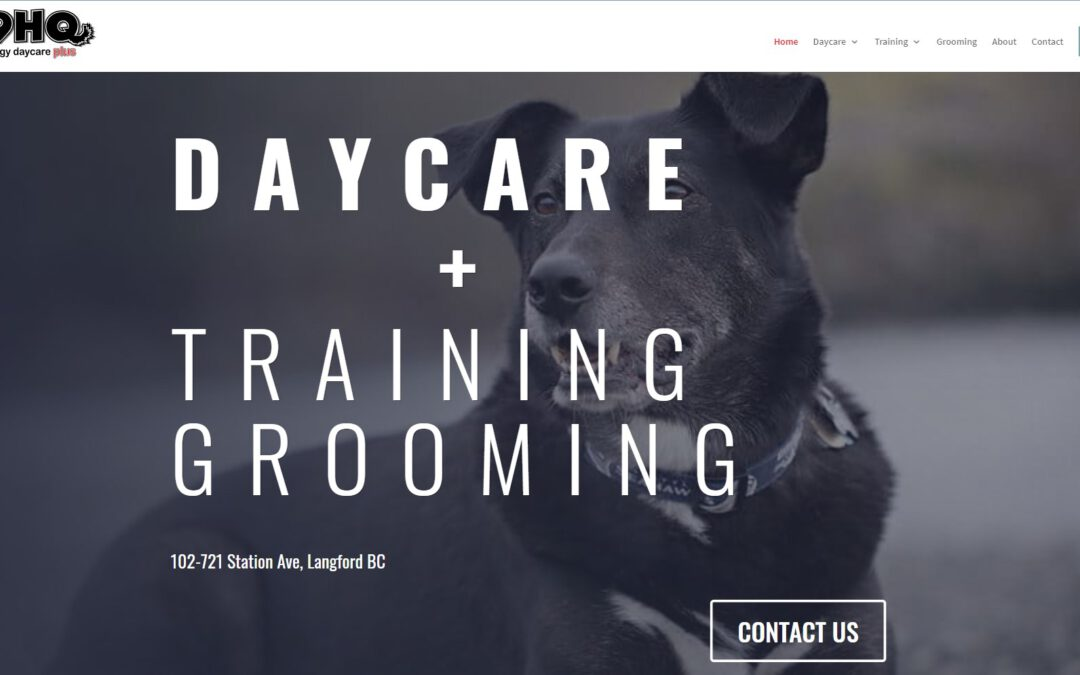 Small Business Spotlight: K9HQ Doggy Daycare Plus Victoria BC
