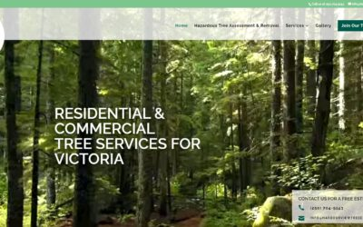 Small Business Spotlight – Harbourview Tree Experts, Victoria, BC